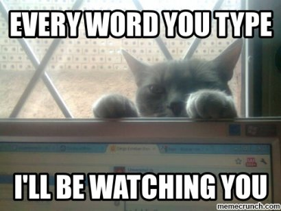 Behavioral Advertising - Image of a cat peering over a computer watching you