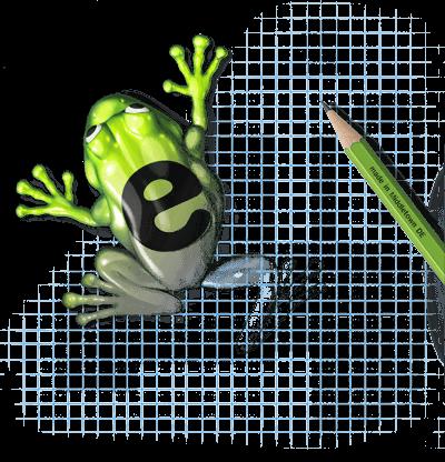 eZanga frog being drawn